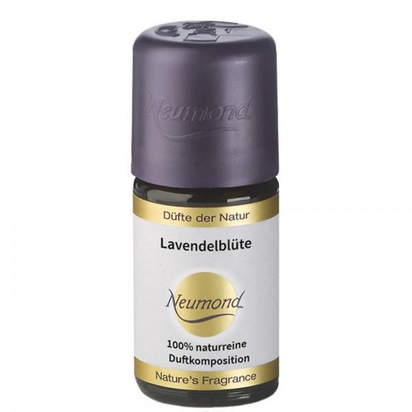 Neumond Lavendelblüte