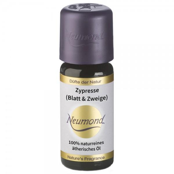 Neumond Zypresse