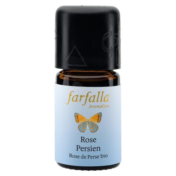 Farfalla Rose Persien