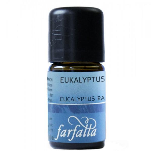Farfalla Eukalyptus radiata