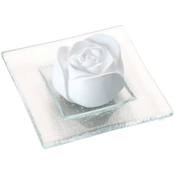 Primavera Duftstein Rosenblüte weiß auf Glasteller