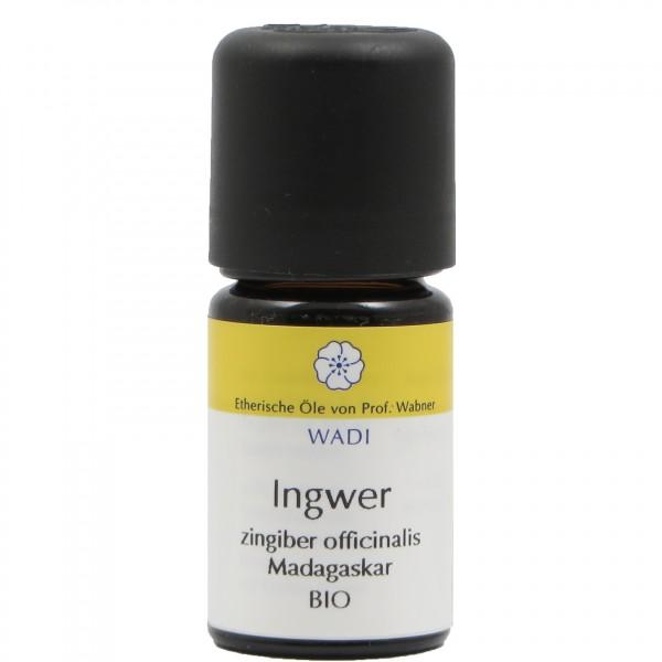 WADI Ingwer bio - ätherisches Ingweröl