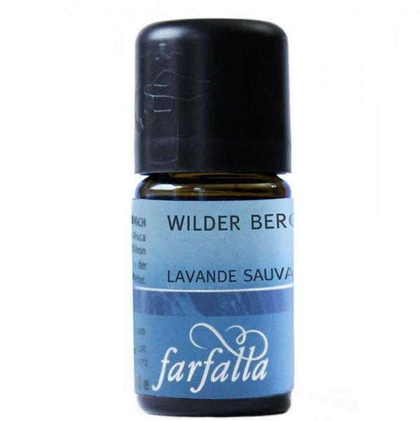 Farfalla Wilder Berglavendel
