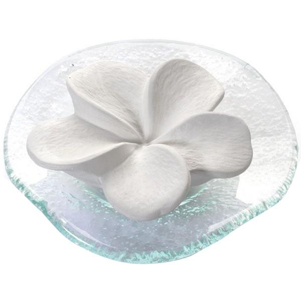 Primavera Duftstein Frangipani mit Glasteller